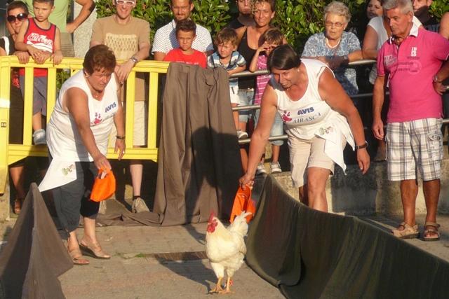 Avis Airasca alla Sagra del Pollo